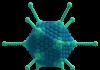 Adeno Virus
